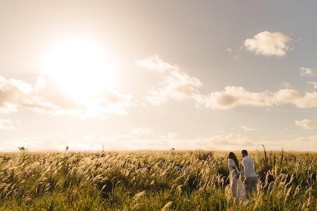 Mann und eine frau, die an einem sonnigen tag in der grünen wiese gehen Kostenlose Fotos