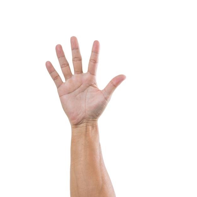 Mannhand mit fünf figur lokalisiert auf weißer oberfläche Premium Fotos