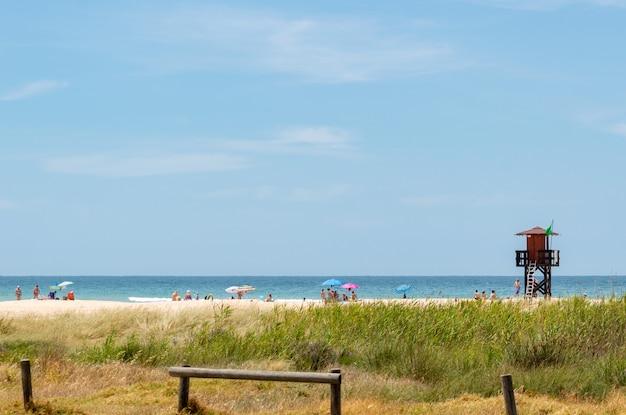 Massen von touristen und sonnenanbetern, die spaß haben und nahe einem rettungsturm bei cadiz, spanien schwimmen Premium Fotos