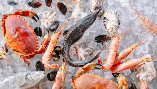 Meeresfrüchte auf eis Premium Fotos