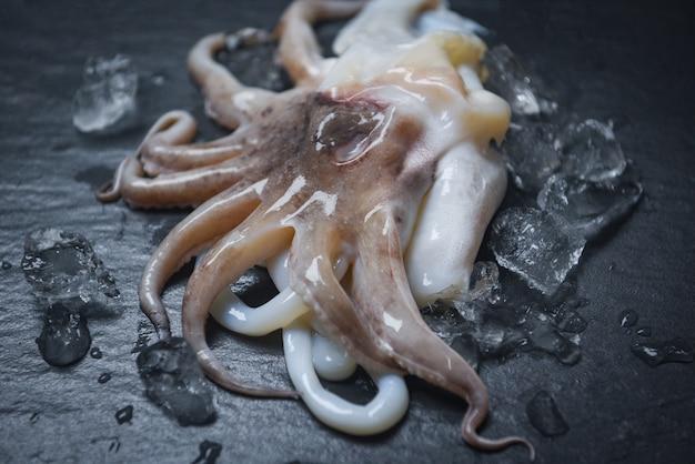 Meeresfrüchtekalmar auf eis. roher kalmar des frischen krakenozean-feinschmeckers mit eis auf dunklem hintergrund im restaurant Premium Fotos