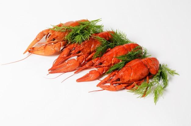 Meeresfrüchteteller mit roten gekochten panzerkrebsen Premium Fotos
