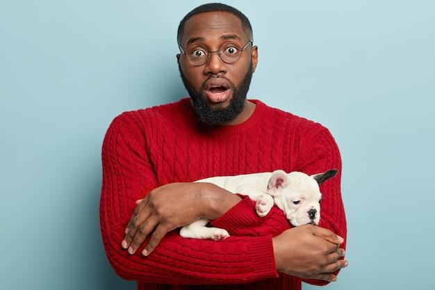 Mensch und hund lieben. verwirrter dunkelhäutiger mann mit dicken borsten, trägt französische bulldogge, betäubt von ungewöhnlichen krankheiten, die sein haustier hat, trägt roten pullover, schaut durch runde brillen, isoliert auf blauer wand Kostenlose Fotos