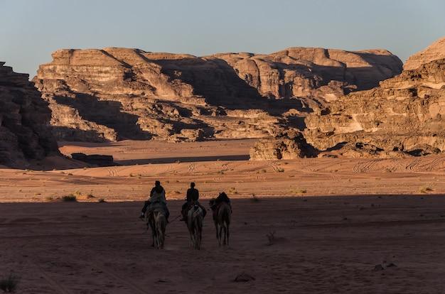Menschen auf kamelen, die den wüstensturm durchmachen Premium Fotos