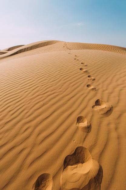 Menschliche abdrücke im sand in der wüste Premium Fotos