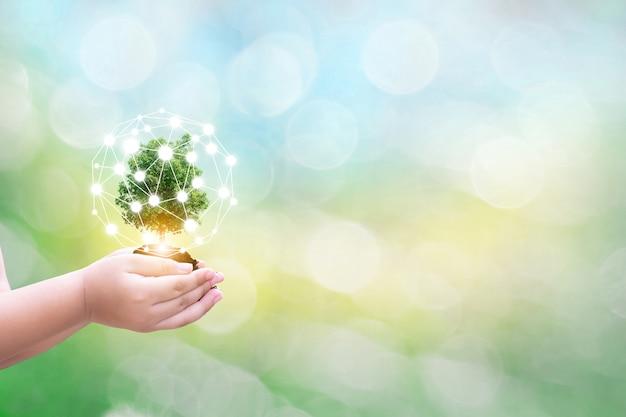 Menschliche hände des ökologiekindes, die großen betriebsbaum mit auf unscharfer hintergrundweltumwelt der welt halten Premium Fotos