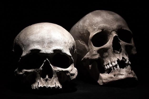 Menschliche schädel auf einem schwarzen. Premium Fotos
