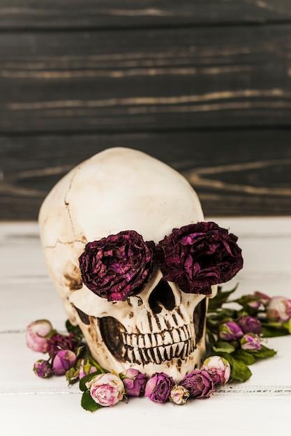 Menschlicher schädel mit rosen in augenhöhlen Kostenlose Fotos