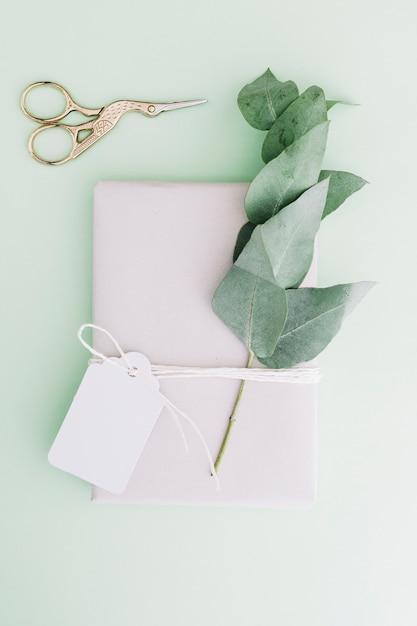 Metallischer scissor mit eingewickelter geschenkbox mit leerem tag und zweig auf pastellhintergrund Kostenlose Fotos