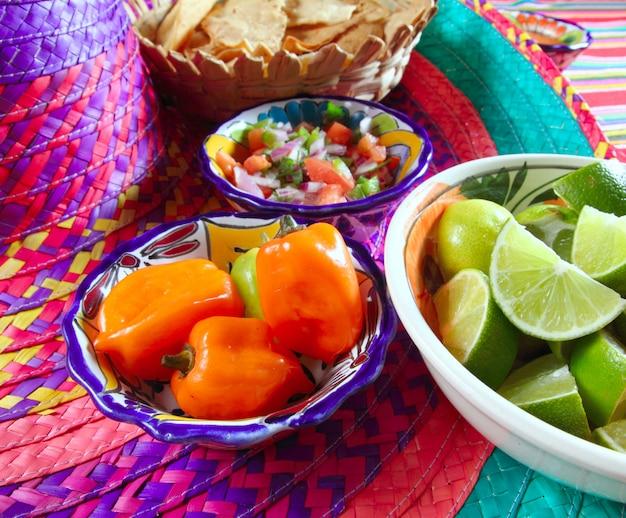 Mexikanische saucen pico de gallo habanero chili sauce Premium Fotos