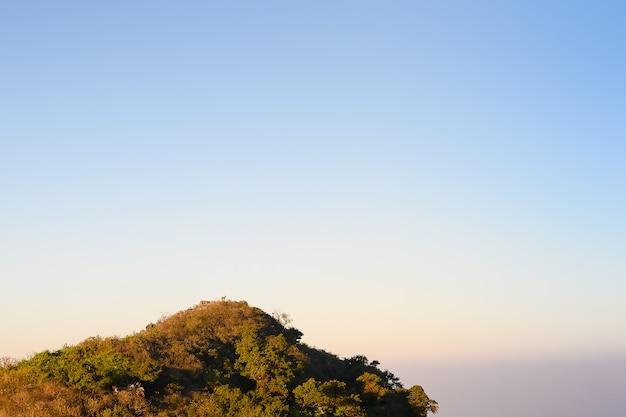 Minimale naturlandschaftsansicht Premium Fotos