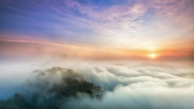 Mist valley Premium Fotos