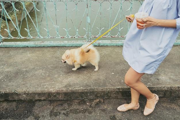 Mit dem hund durch die stadt spazieren Kostenlose Fotos