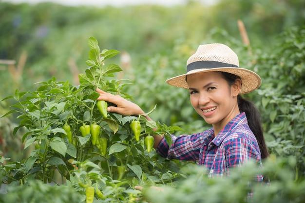 Mittlerer gealterter frauenlandwirt, mit organischem paprika an hand Kostenlose Fotos