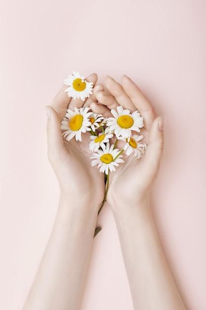 Mode hand kunst kamille naturkosmetik frauen Premium Fotos