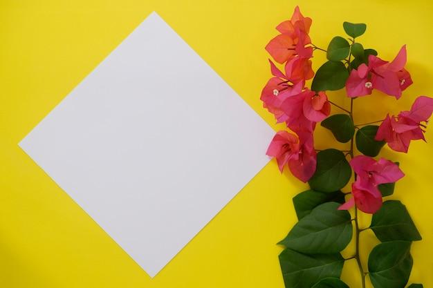 Modellweißbuch mit platz für text oder bild auf gelbem hintergrund und blume. Premium Fotos