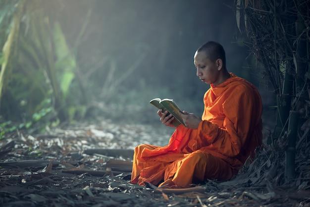 Mönchlesebuch, thailand. Premium Fotos