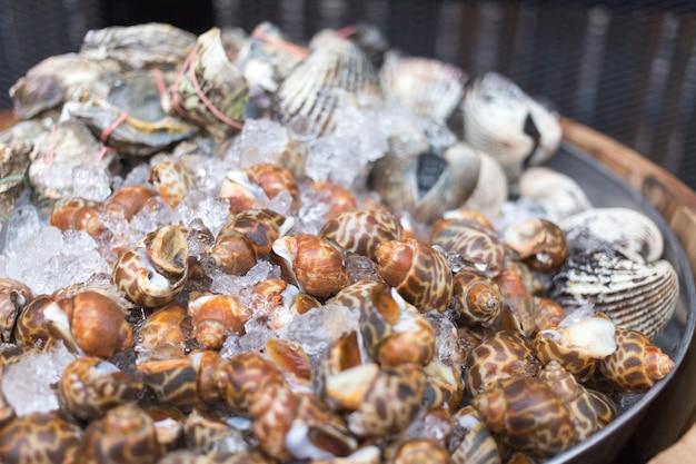 Molluske mit eis für frischen aufschlag, um meeresfrüchte zu machen Premium Fotos