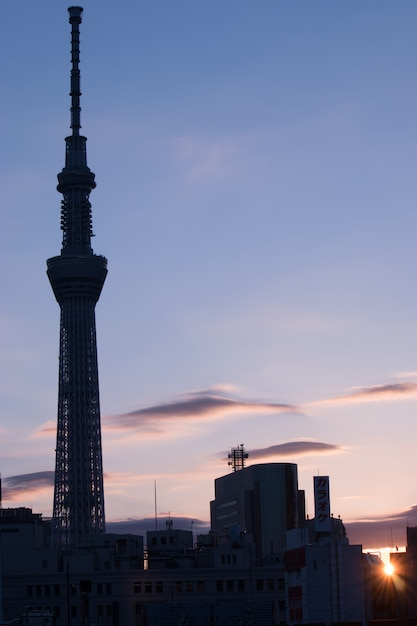Morgensonnenaufgang mit schattenbild von tokyo-skytree, mittelstadtblick von asakusa, tokyo, japan Premium Fotos