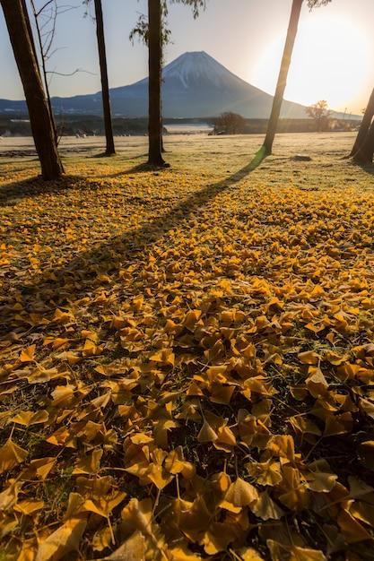 Mount fuji sunrise Premium Fotos