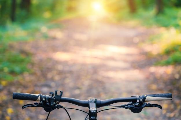 Mountainbiken bergab schnell mit dem fahrrad absteigend. blick aus den augen des bikers. Premium Fotos