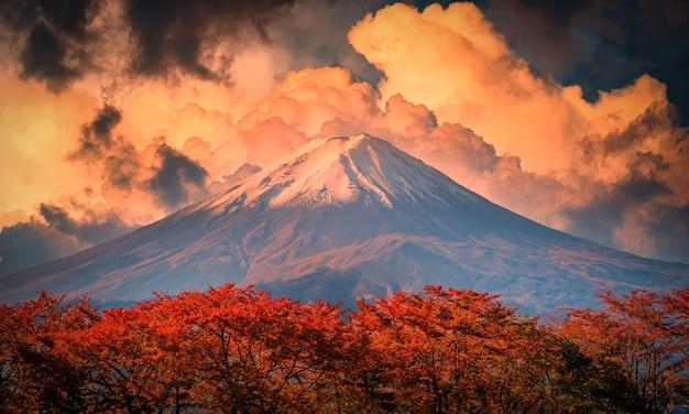 Mt. fuji auf blauem himmelhintergrund mit herbstlaub zur tageszeit in fujikawaguchiko, japan. Premium Fotos
