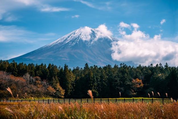 Mt. fuji auf hintergrund des blauen himmels mit herbstlaub tagsüber in fujikawaguchiko, japan. Premium Fotos