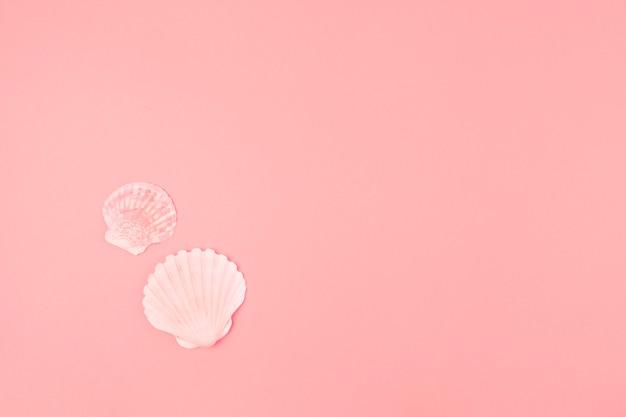 Muschel mit zwei muscheln auf rosa hintergrund Kostenlose Fotos
