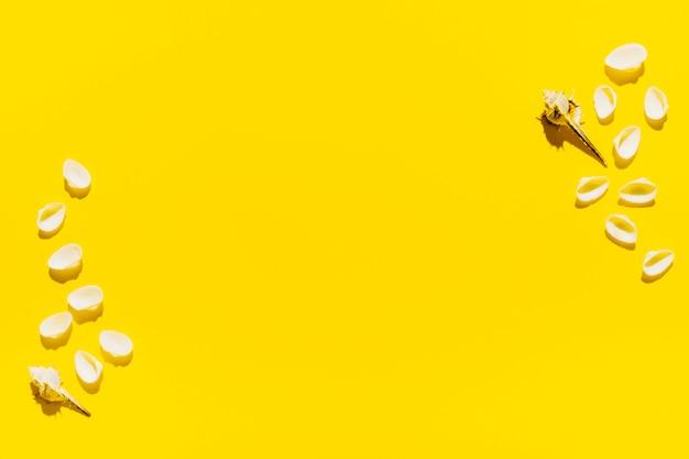 Muscheln auf hellem hintergrund Kostenlose Fotos