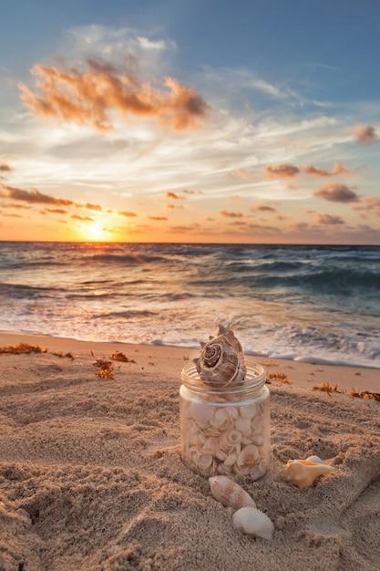 Muscheln gesammelt in einem grasgefäß auf tropischem sandy beach mit sonnenaufgang über ozean Premium Fotos