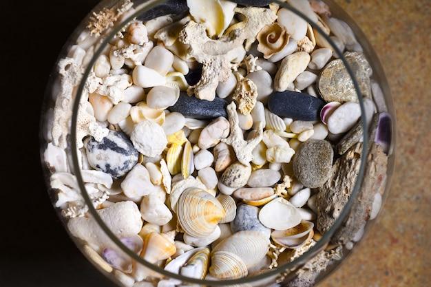 Muscheln, korallen, steine in einer glasflasche und weinglas Premium Fotos