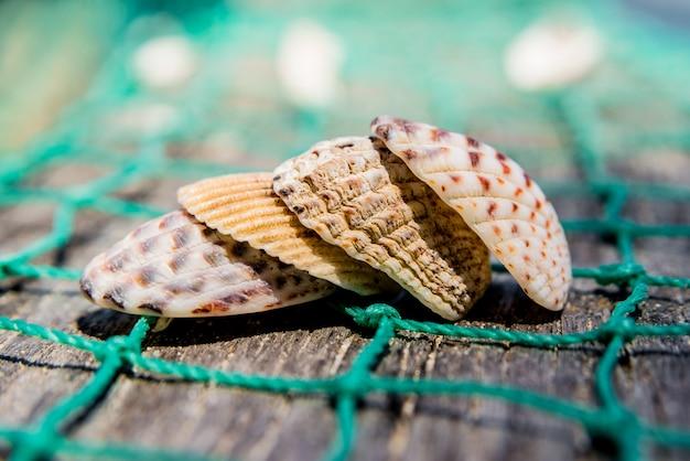 Muscheln mit fischernetz und hut Premium Fotos