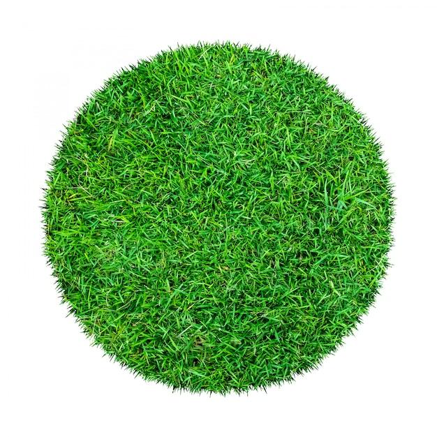 Muster des grünen grases lokalisiert auf einem weiß. Premium Fotos