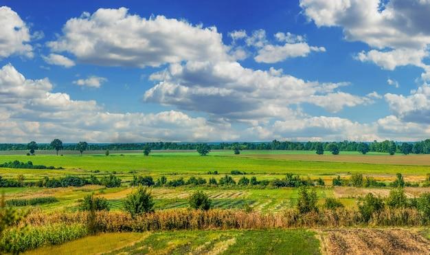 Muster von geernteten landwirtschaftlichen feldern in den hügeln, umgeben von bäumen an einem warmen spätsommer mit schönem himmel Premium Fotos