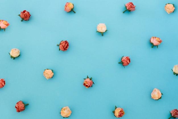 Muster von rosen auf blauem hintergrund Kostenlose Fotos