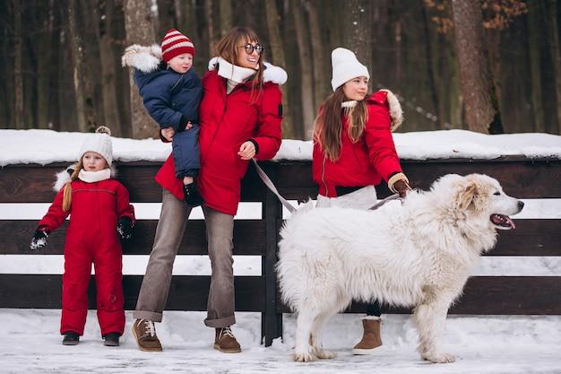 Mutter mit den kindern und hund, die draußen im winter spielen Kostenlose Fotos