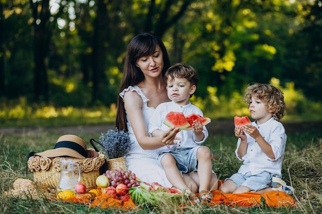 Mutter mit ihren söhnen beim picknick im park Kostenlose Fotos