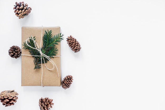 Nadelbaumkegel, die um geschenk mit dem zweig liegen Kostenlose Fotos