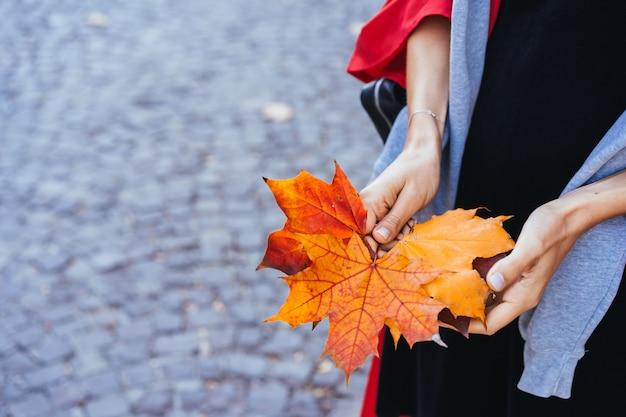 Nahaufnahme der hände des mädchens, die herbstahornbaumblätter anhalten Kostenlose Fotos