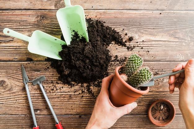 Nahaufnahme der hand der frau die kaktuspflanze auf hölzernem schreibtisch pflanzend Kostenlose Fotos