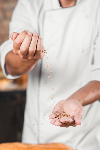 Nahaufnahme der hand des bäckers braune weizenkörner werfend Kostenlose Fotos