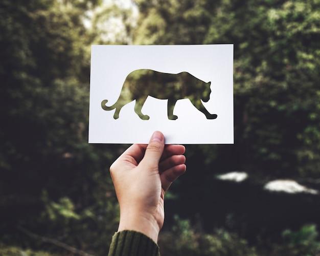 Nahaufnahme der hand perforiertes papier des leoparden mit grünem naturhintergrund halten Kostenlose Fotos