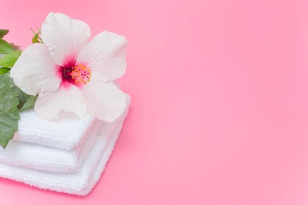 Nahaufnahme der weißen hibiscusblume und -tücher auf rosa hintergrund Kostenlose Fotos