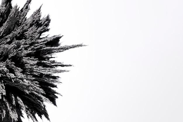 Nahaufnahme des magnetischen metallischen rasierens auf weißem hintergrund Kostenlose Fotos