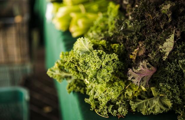 Nahaufnahme des organischen frischen kohls verlässt gemüse für verkauf im markt Kostenlose Fotos
