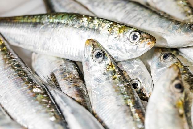 Nahaufnahme des stapels der frischen fische auf eis Kostenlose Fotos