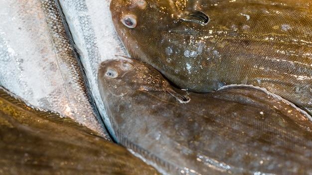 Nahaufnahme des stapels der frischen fische Kostenlose Fotos