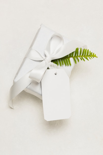 Nahaufnahme einer geschenkschachtel; leeres tag und grünes blatt getrennt auf weißem hintergrund Kostenlose Fotos