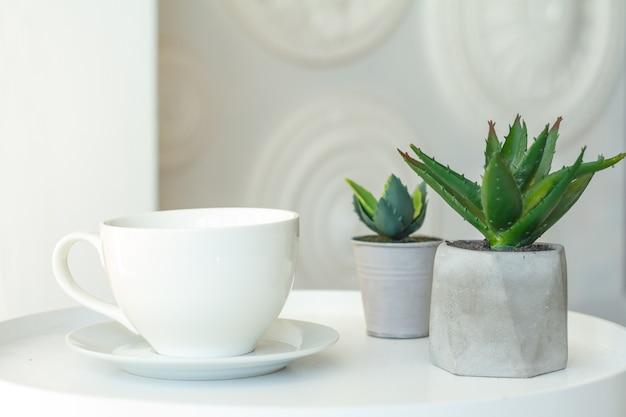Nahaufnahme einer weißen tasse und zwei betontöpfe mit sukkulenten auf einem unscharfen hintergrund einer dekorativen wand, selektiver fokus Premium Fotos