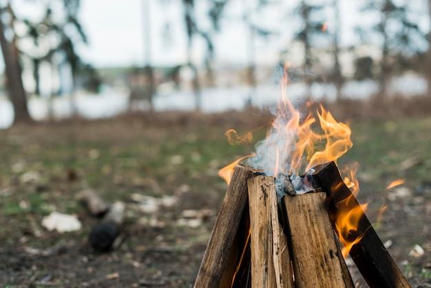 Nahaufnahme lagerfeuer mit flammen Kostenlose Fotos